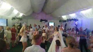 Пародист Оли Поляковой Дима Черников | Wedding | Смела | Гуляй поле | Шоу пародий | Весілля